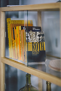 Books on a bookcase shelf