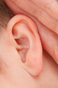 person's left ear