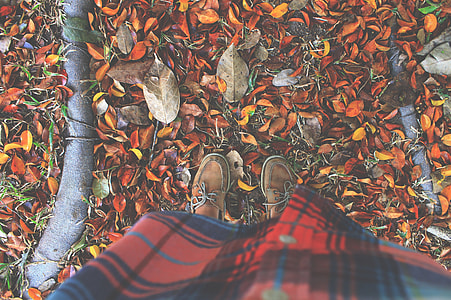person in pair of brown leather boat shoes stepping on brown fallen leaves