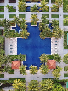 aerial photography of park pool near building with palm tress