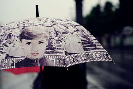 person holding umbrella