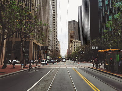 asphalt road between white concrete high-rise buildings