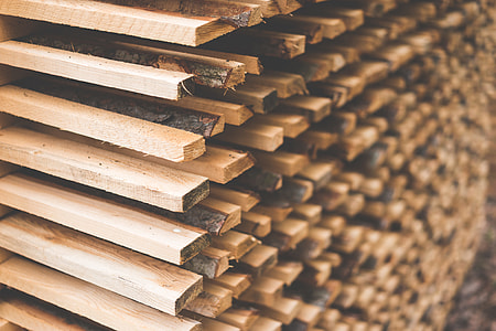 Freshly Cut Wood Stacked for Lumber Air Drying