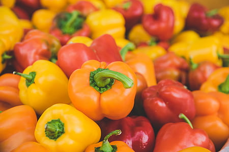 photo of bell pepper lot