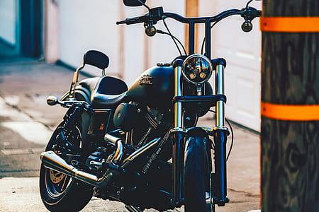 person taking photo of black Harley-Davidson cruiser motorcycle