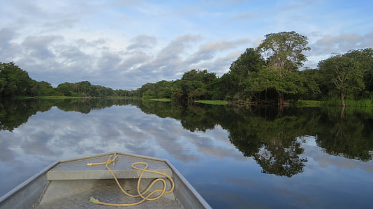boat on body of water with trees at daytime