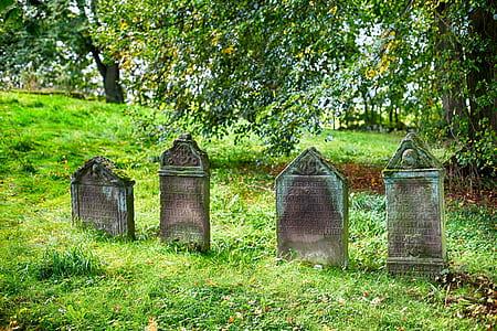 four gray concrete graves