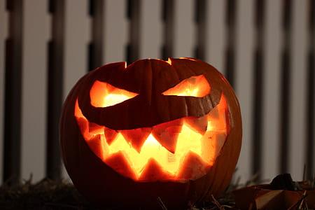 brown and orange pumpkin lantern