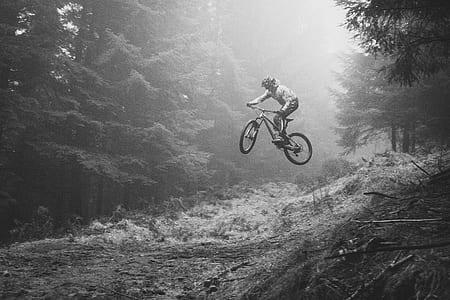 bike, jump, bmx, tree, woodland