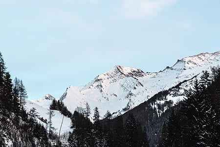 Snow Covered Mountain With Black Trees Under Blue Sky at Daytime