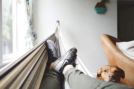 selective focus photography of person wearing sneakers lying on hammock