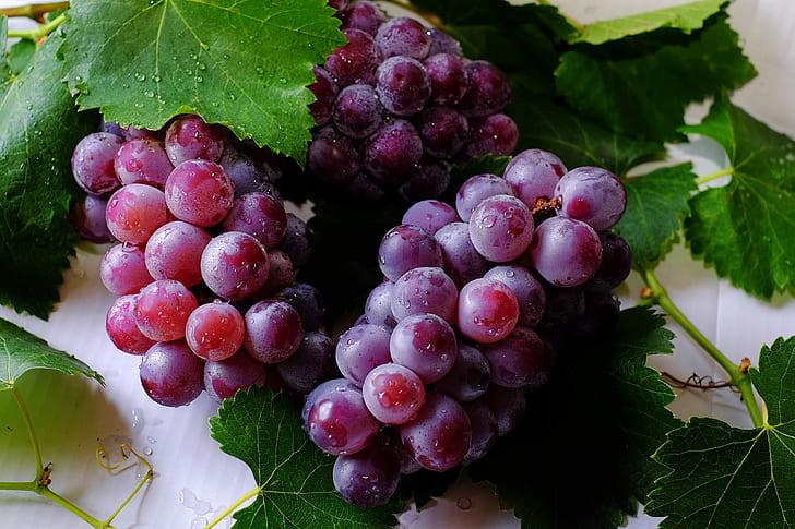 Image result for grape fruits