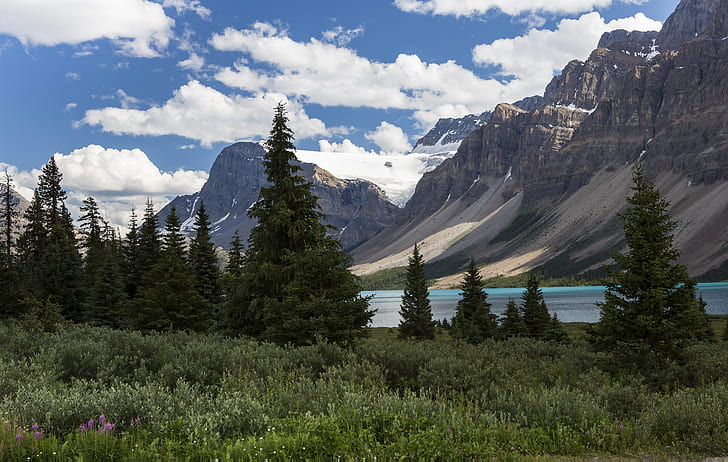 Scenic View at the Banff National Park