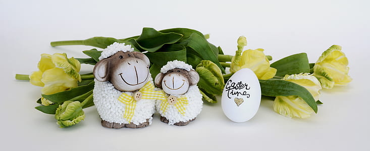 two white sheep party favors