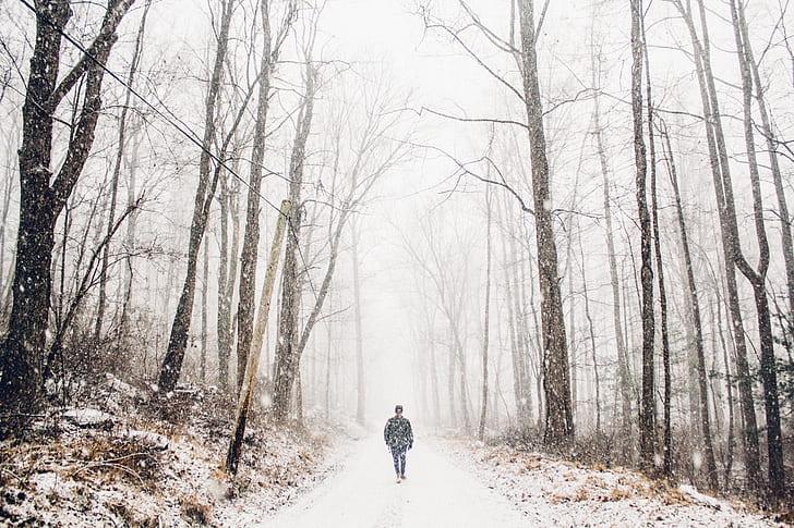 man walking in pathway during winter