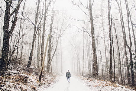 man walking in pathway during winter