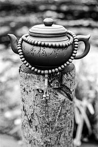 gray teapot on gray tree log