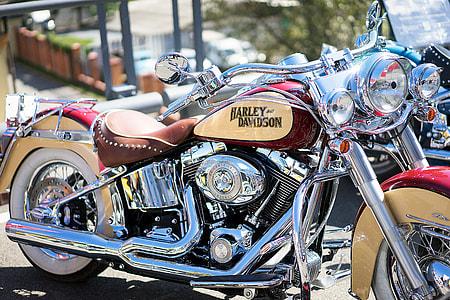black and silver Harley-Davidson cruiser motorcycle