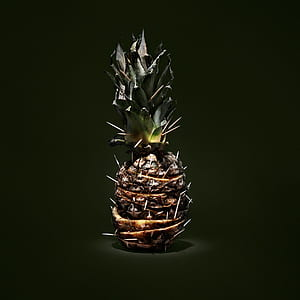 photography of brown pineapple