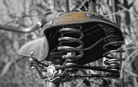 bike saddle near leafless trees