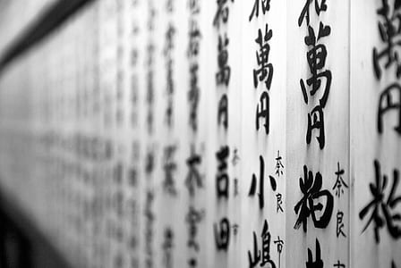 photo of black and white non-English script wall decor