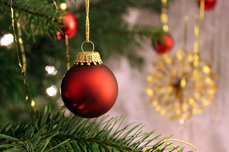 close-up photo of red Christmas bauble hanged on green Christmas tree