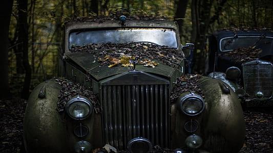 gray Rolls Royce vehicle