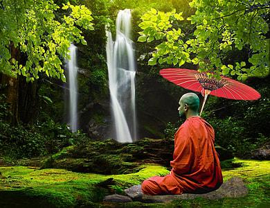 meditating monk near green leaf tree