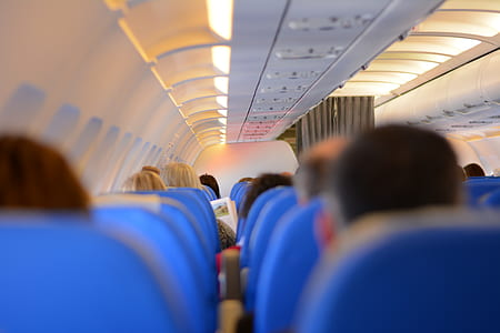 people sitting in airplane seats