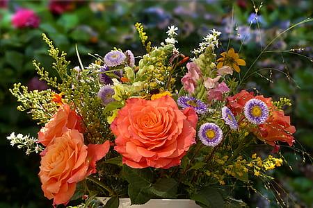 orange petaled flowers macro photography
