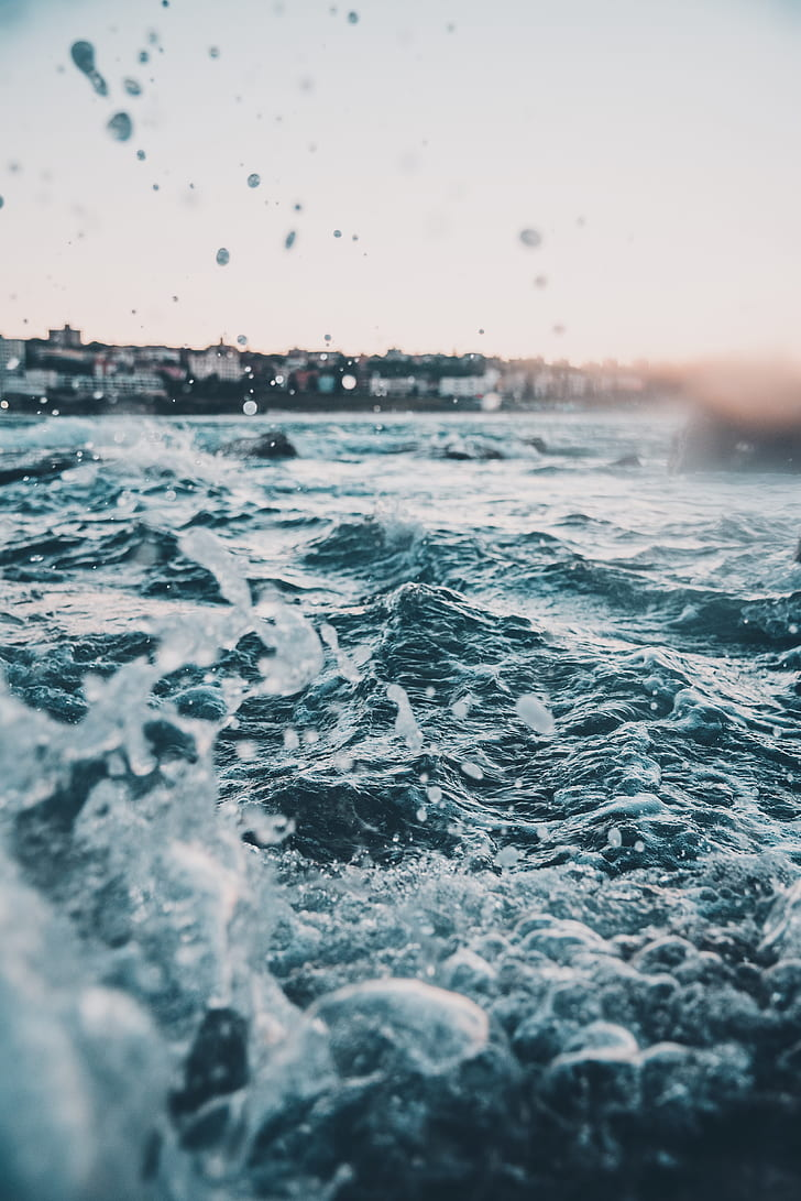 sea, ocean, water, wave, coast