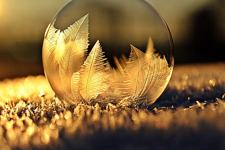 closeup photo of glass sphere