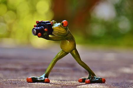treefrog holding DSLR camera taking a photo closeup photography