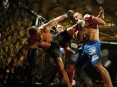 two MMA fighters fighting at octagon