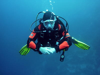 man wearing black and red diving suit underwater