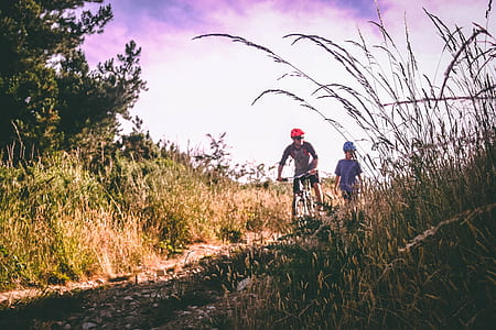 Two Bikers on Bush-lined Path
