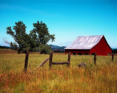 fence between grass fields