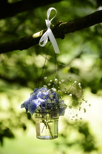 selective focus photograph of blue petaled flowers in clear glass vase hanging on tree branch