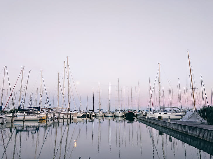 boats on dock during golden hour
