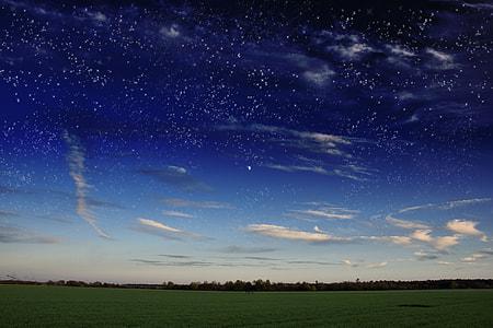 green grass lawn under starry sky