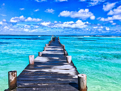 blue, black, and white wooden dock