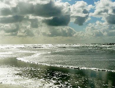 beach under white clouds