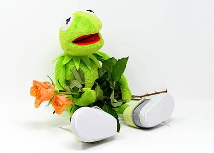 Hermit the Frog holding pink rose flowers