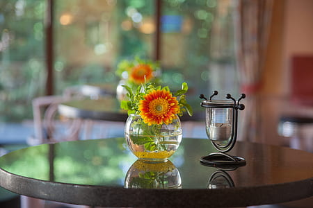 clear glass vase with green and red petal flowers on table