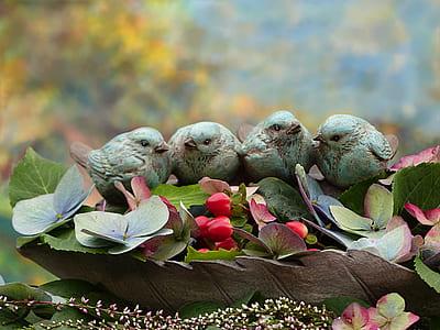 four blue birds on green leaf plant