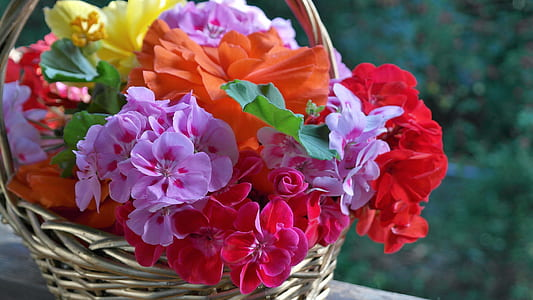 assorted-colored petaled flowers in brown wicker baskets