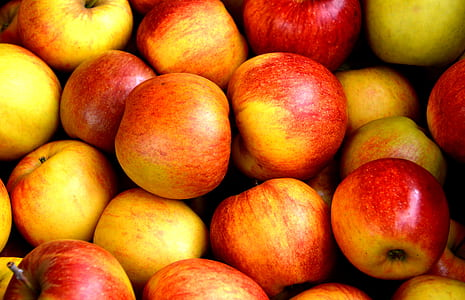 close-up photo of bunch of apples