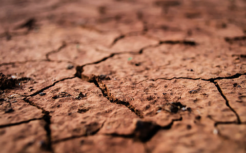 photo of brown dried soils