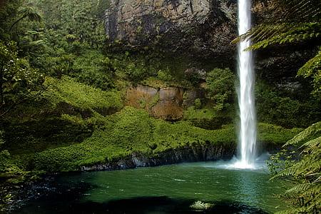 waterfalls beside green trees