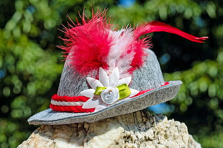 gray trilby hat on top of rock
